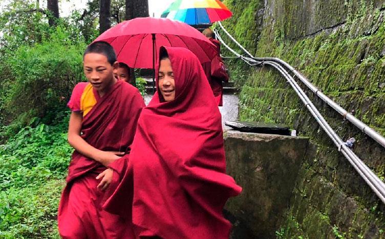 Dharmsala - India norte | viajar haciendo yoga - Apasho