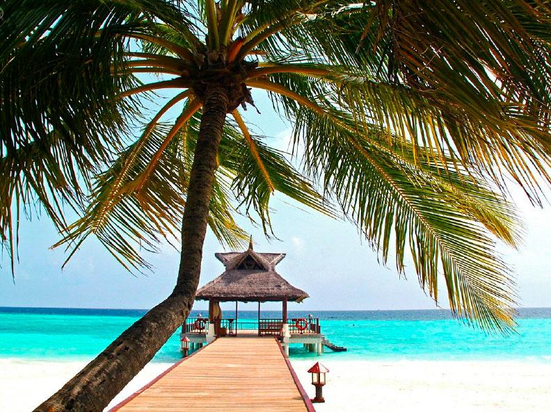 Viaje yoga Maldivas - aventura al estilo slow travelling | apasho yoga