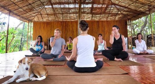 Condición física - viaje yoga India sur | Apasho yoga
