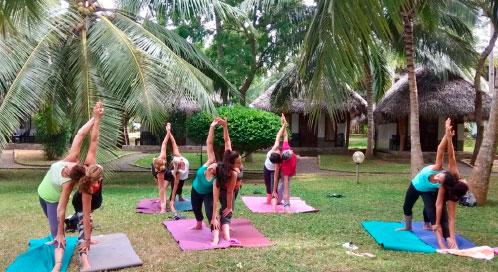 ¿Cuándo haremos yoga? - viaje yoga Sri Lanka | Apasho yoga